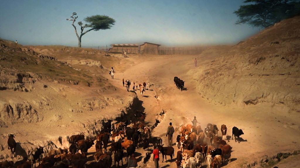 Shashamane Africa